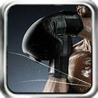 Boxing Mania - Get in the ring with this boxing game
