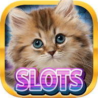 Casino Kitty - Free Cat Slots