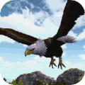 Eagle Simulator 3D