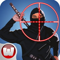 Find and Kill Ninja