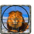 Lion Hunting Sniper 3D