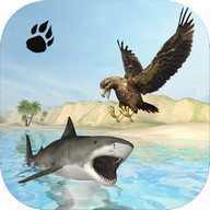 Sea Eagle Survival Simulator