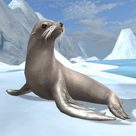 Sea Lion Simulator