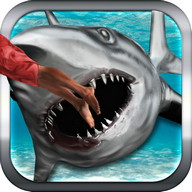 Shark Attack liar Simulator 3D