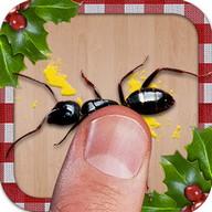 Pemukul Semut Natal, Terbaik