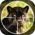 Black Panther Shooter 3D