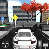 Car Parking Race Speed 3D