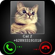Fake Call Cat Joke