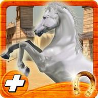 kuda barat kehidupan pelari
