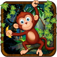 Monkey Adventures Run