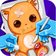 Simulator Surgery Cat