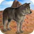 Wolf Mountain Climb