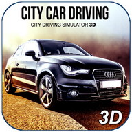 City Car Driving 3D