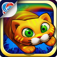 City Cat - Travel around the world with a cat