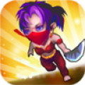 Devil Assassin:evil ninja