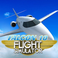 Falcon 10 Flight Simulator