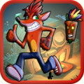 Fox Crash Adventure
