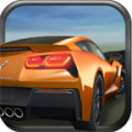 Highway Riot Car Racing 3D