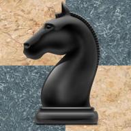 Schach – Taktik und Strategie