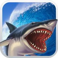Clumsy Shark Fish