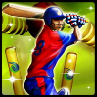 Cricket T20 Fever 3D - A fun 3D cricket game