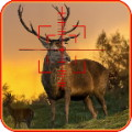 Deer Hunting Quest 3D