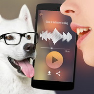 Translator for dogs Simulator