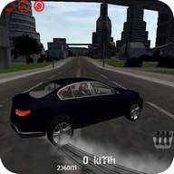 Fantastic Car Drive Simulator