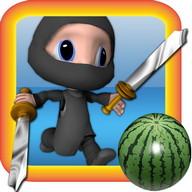 Ninja Cutting Master