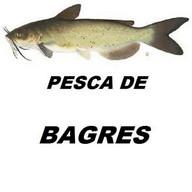 PESCA DE BAGRES