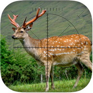 Deer Sniper: Hunting Game