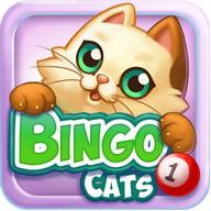 Bingo Cats