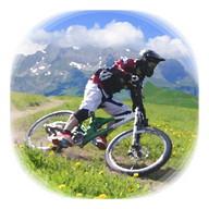 Downhill Champion Lite