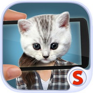 Face scanner: What cat