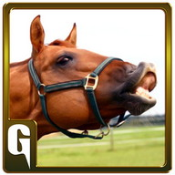 Wild Horse Simulator Game 3D