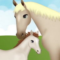 Horse Pregnancy Games 2