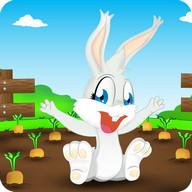 Looney Bunny Run