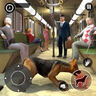 สุนัขตำรวจ รถไฟใต้ดินอาชญากรรม