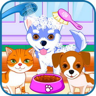 Puppy And Kitty Salon - Groom these delightful pets
