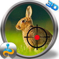 Wild Animal Rabbit Simulator