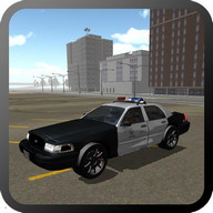 Real Cop Simulator