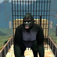 gerçek goril simülatör