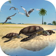 Sea Turtle Simulator