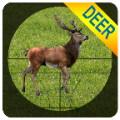 Sniper Deer Hunting