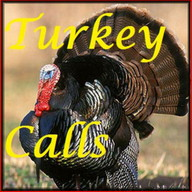 Turkey Calls HD