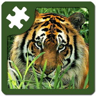 Wild animals puzzle: Jigsaw