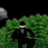 3D Ninja Game