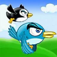 Animal Flight