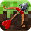 Arrow Craft 3D