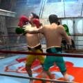 Boxing rival